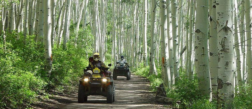 Квадроциклы для дальних походов