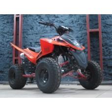 Квадроцикл Fusim Fx 110