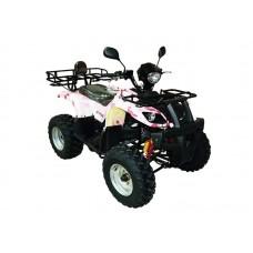 Квадроцикл ArmadA ATV 150B R8