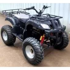 Электроквадроцикл BISON 800