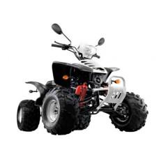 Квадроцикл Omaks Yh200st