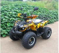 Электроквадроцикл MYTOY 1000A