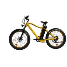 El-sport bike TDE-03 350W