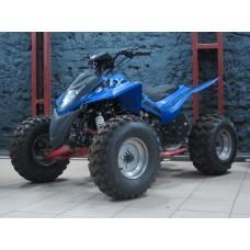 Квадроцикл Fusim Fx 250