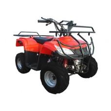 Квадроцикл Bison Atv 125-23
