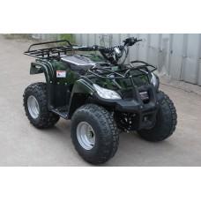 Электроквадроцикл Ровер 1000W