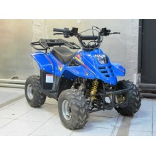 Квадроцикл Bison 110s