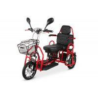 Электротрицикл Transporter PRO Li-Ion